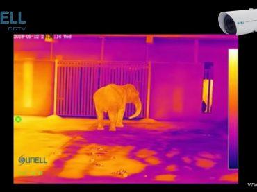 Thermal Camera กล้องตรวจจับอุณหภูมิ